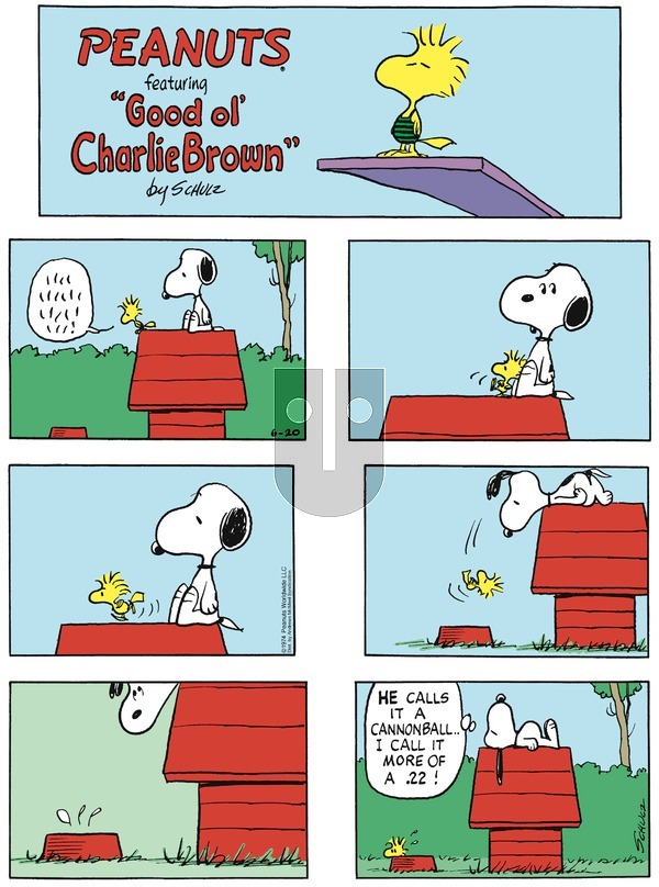 Peanuts - Sunday June 20, 2021 Comic Strip