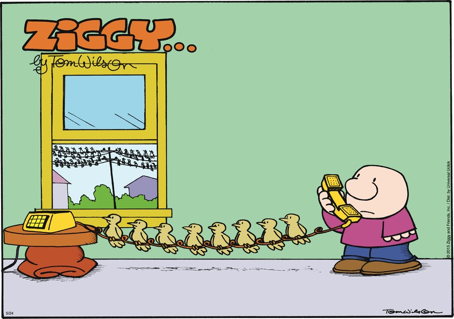 Ziggy Comic Strip for May 24, 2015
