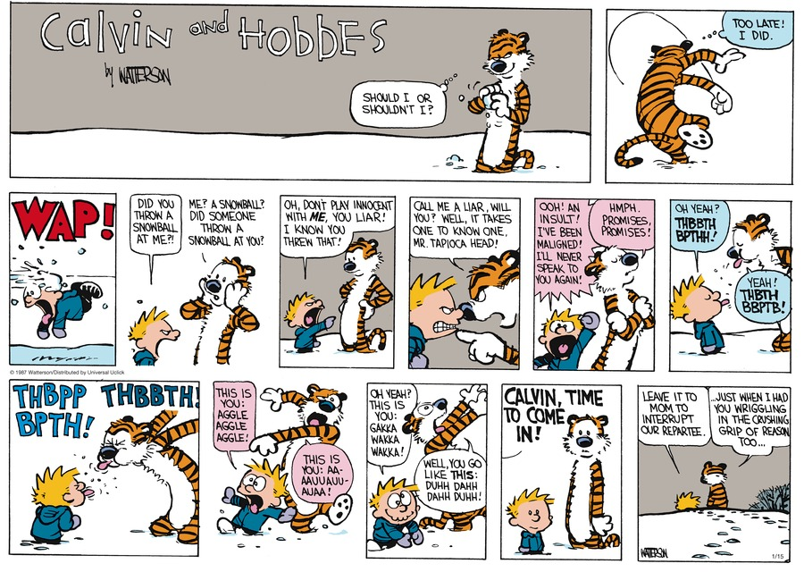 Calvin and Hobbes Comic Strip for January 15, 2017