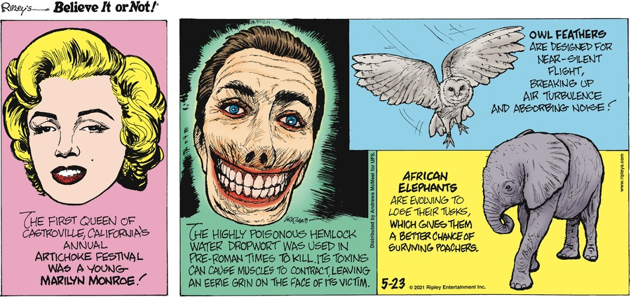 Ripley's Believe It or Not Comic Strip for May 23, 2021