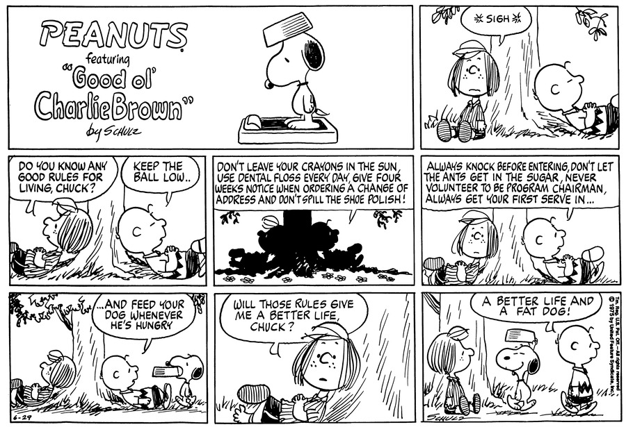 Peanuts Comic Strip for June 29, 1975