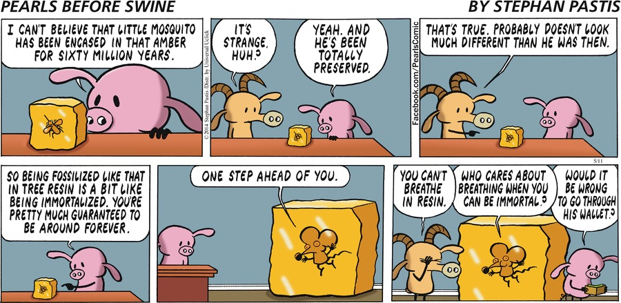 Pearls Before Swine Comic Strip for May 11, 2014