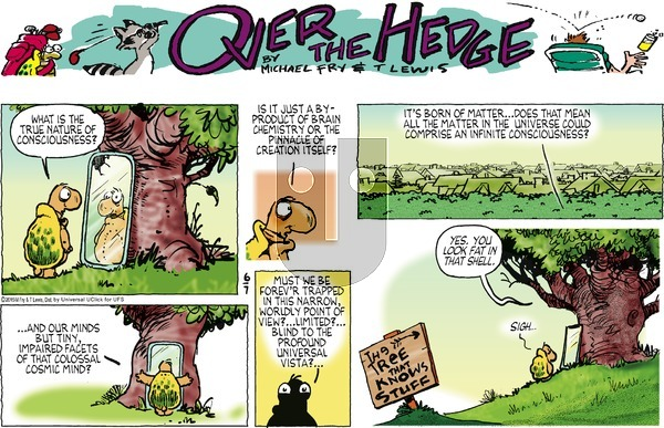 Over the Hedge on Sunday June 7, 2015 Comic Strip