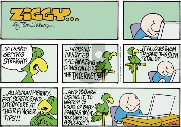 Ziggy on Sunday November 1, 2020 Comic Strip