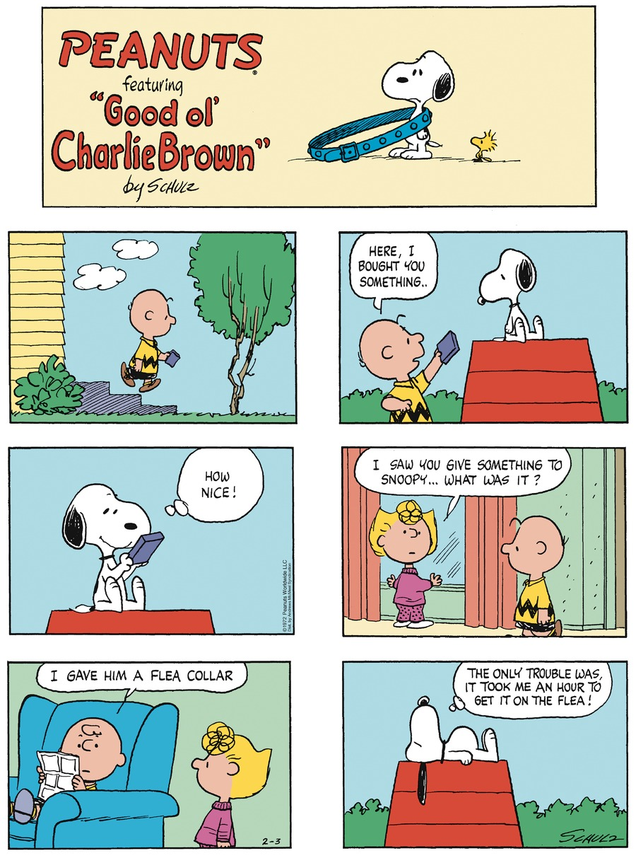 Peanuts by Charles Schulz for February 03, 2019