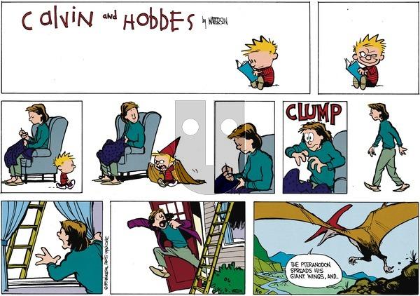 Calvin and Hobbes - Sunday February 26, 1989 Comic Strip