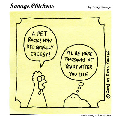 Chicken: A pet rock! How delightfully cheesy! 