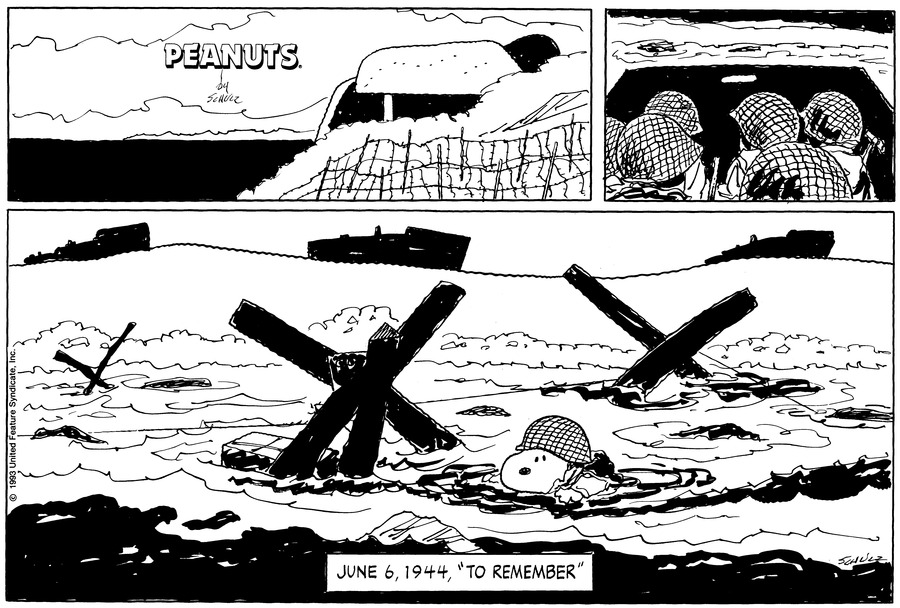 Peanuts Comic Strip for June 06, 1993
