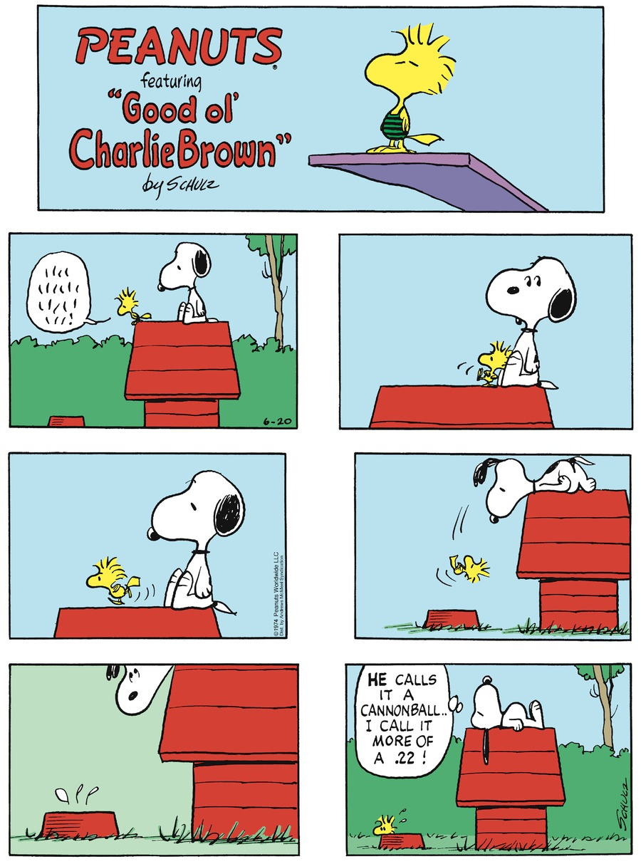 Peanuts Comic Strip for June 20, 2021