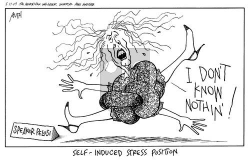 Tony Auth on Sunday May 17, 2009 Comic Strip