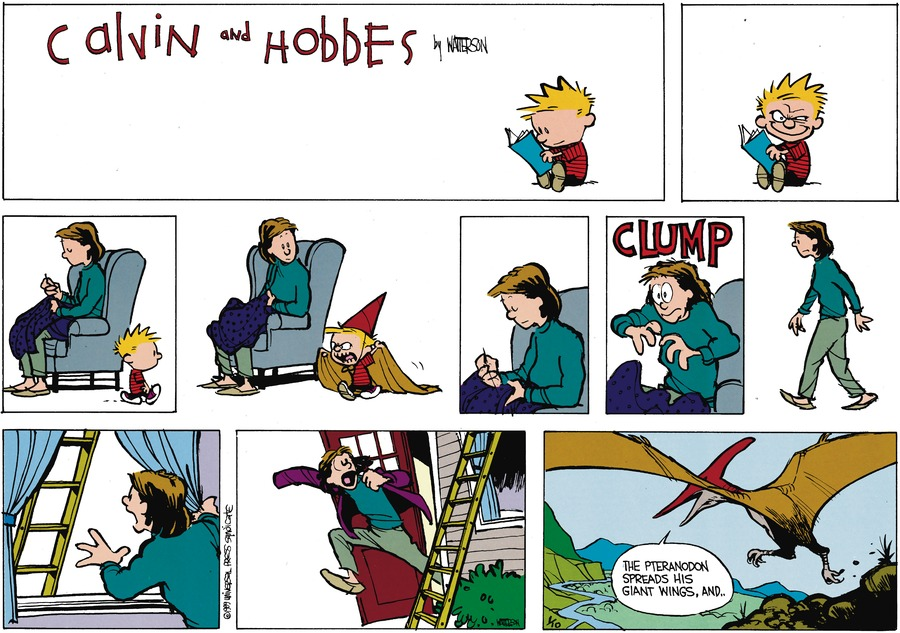 Calvin and Hobbes Comic Strip for February 26, 1989