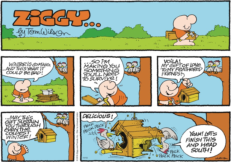 Ziggy Comic Strip for November 13, 2016
