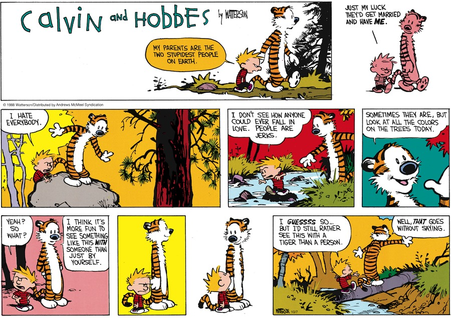 Calvin and Hobbes Comic Strip for October 07, 2018