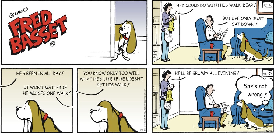 Fred Basset Comic Strip for May 16, 2021