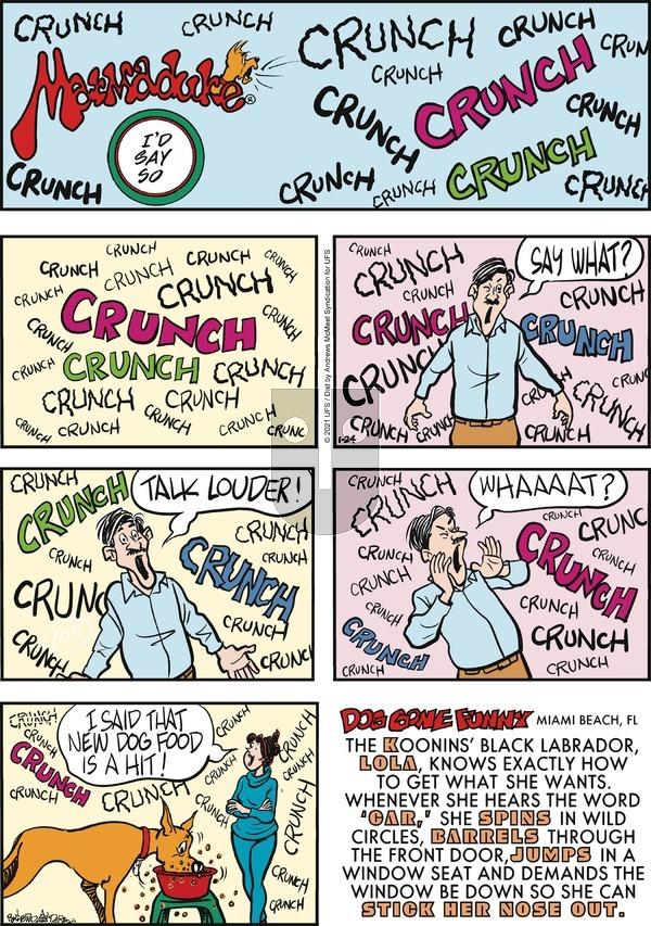 Marmaduke on Sunday January 24, 2021 Comic Strip