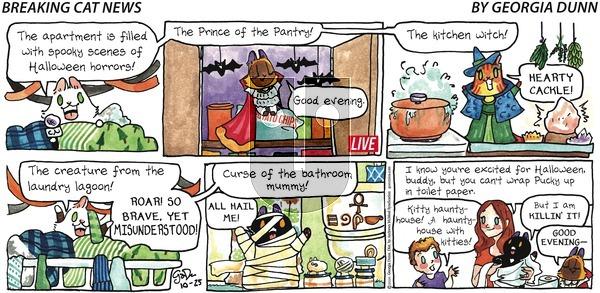 Breaking Cat News on Sunday October 25, 2020 Comic Strip
