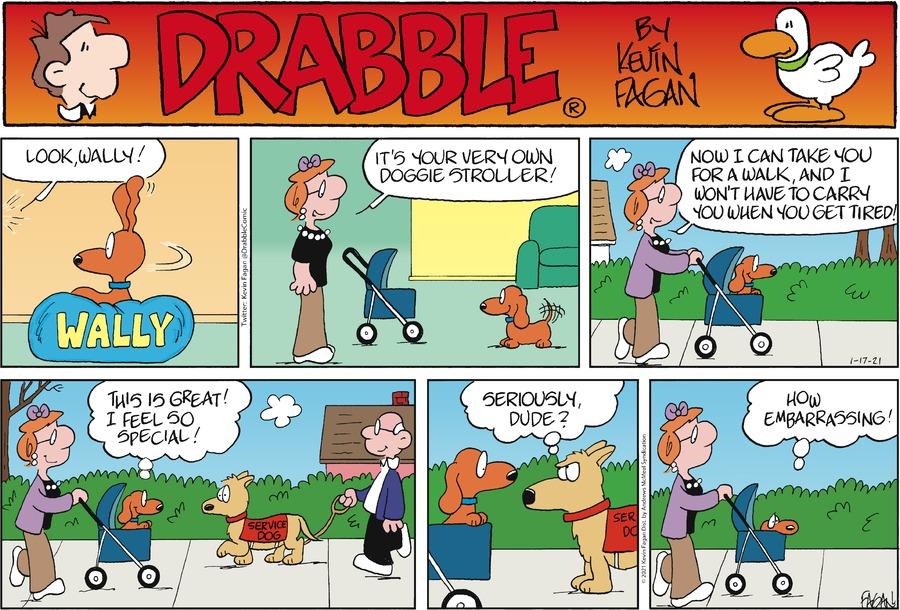 Drabble Comic Strip for January 17, 2021