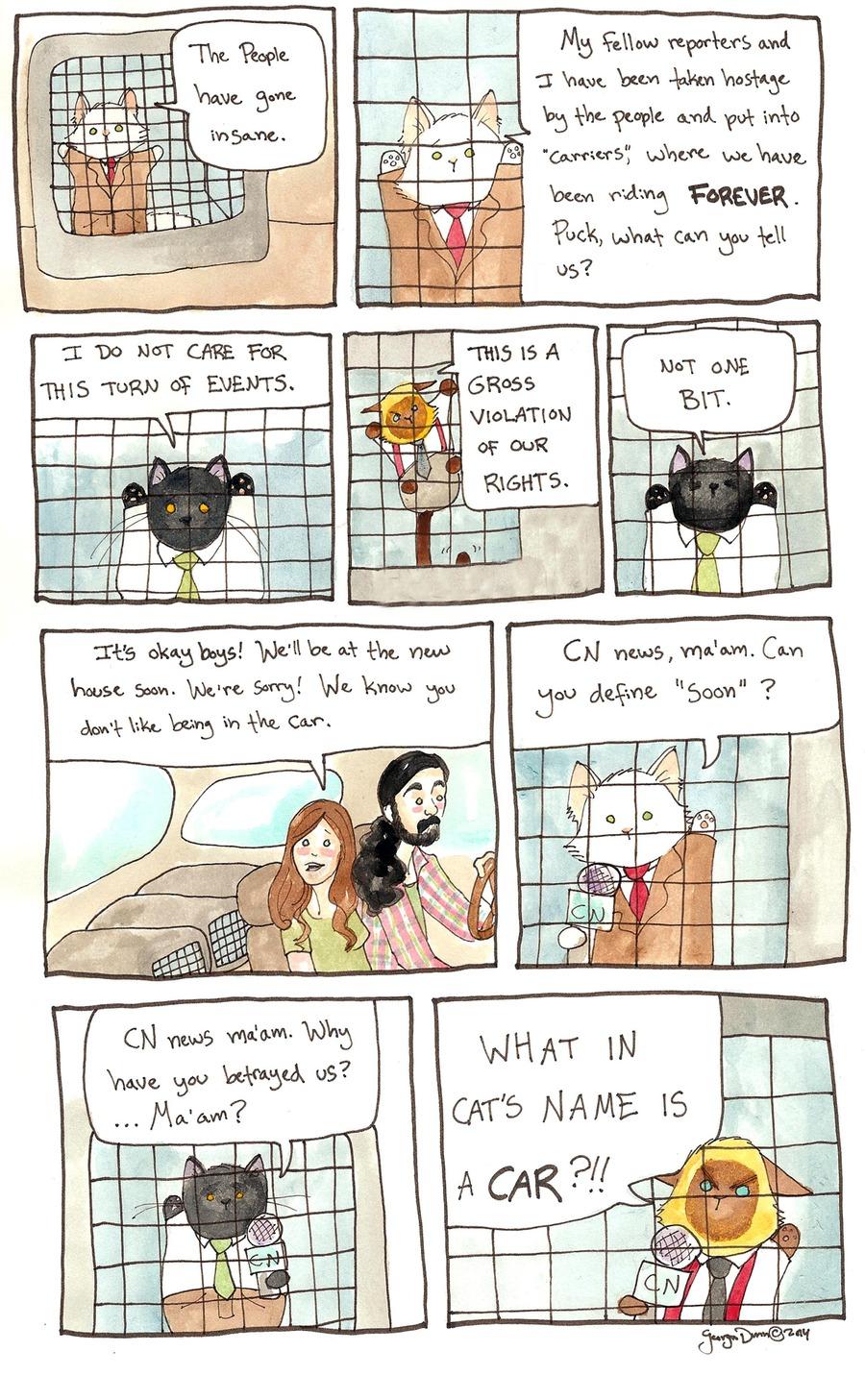 Breaking Cat News for Sep 11, 2016 Comic Strip