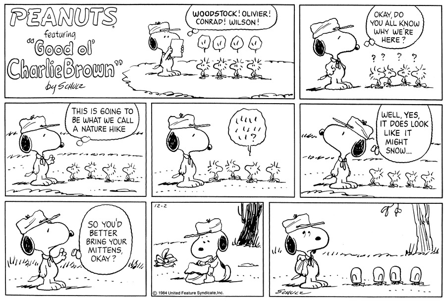 Peanuts Comic Strip for December 02, 1984