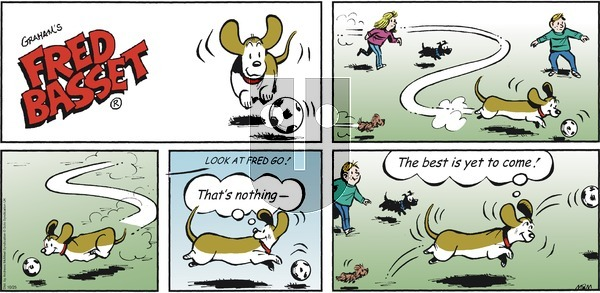 Fred Basset - Sunday October 25, 2020 Comic Strip