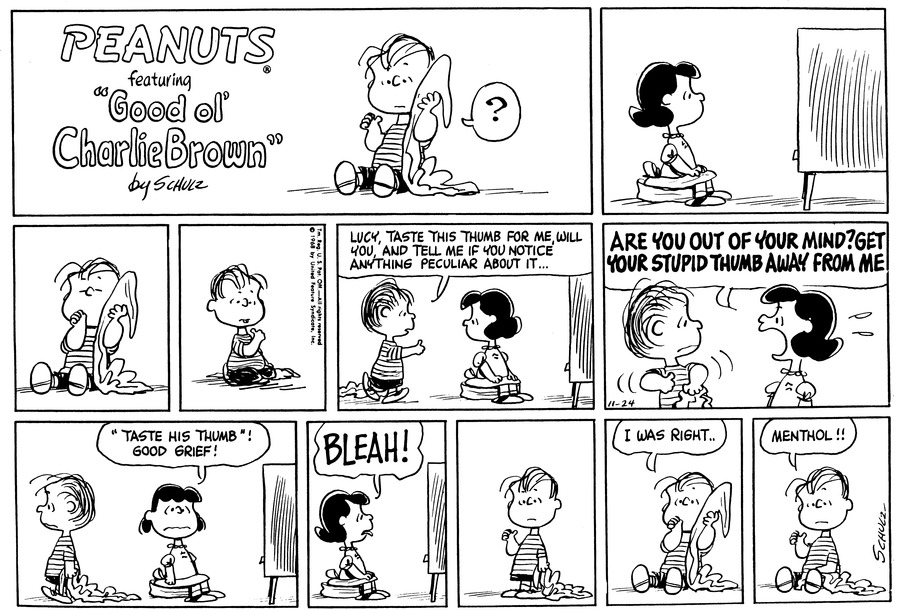 Peanuts Comic Strip for November 24, 1968