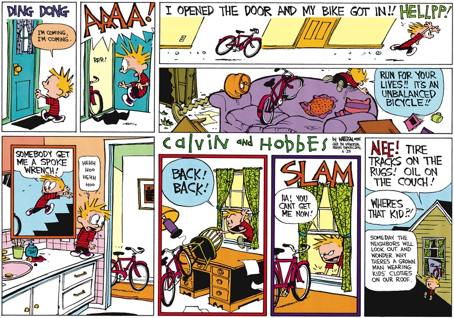 Calvin and Hobbes Comic Strip for June 25, 1995
