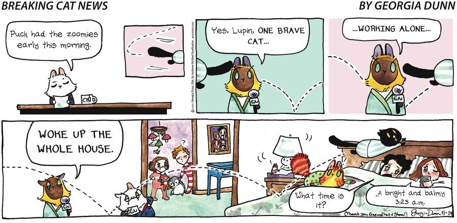 Breaking Cat News Comic Strip for November 29, 2020