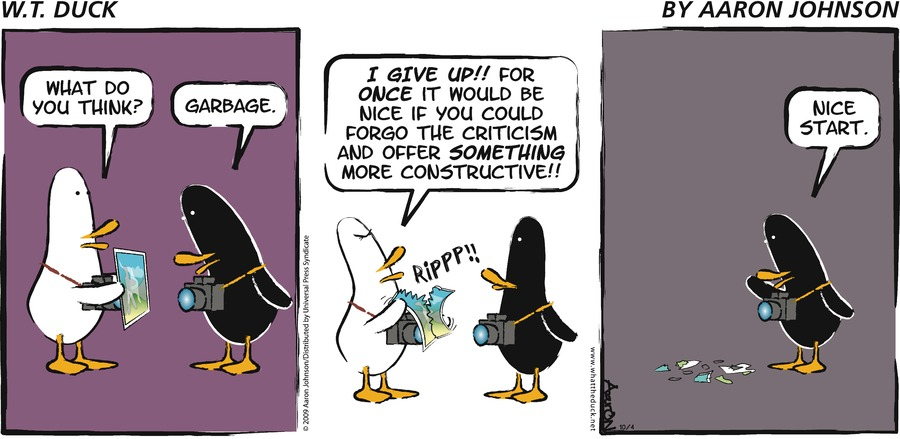 W.T. Duck Comic Strip for May 07, 2017