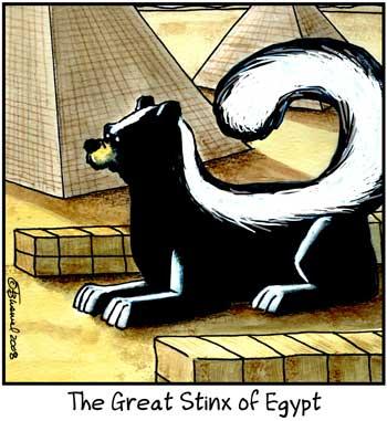 Birdbrains Comic Strip for January 14, 2021