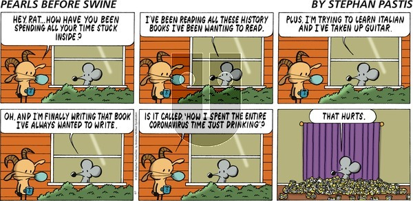 Pearls Before Swine on Sunday June 7, 2020 Comic Strip