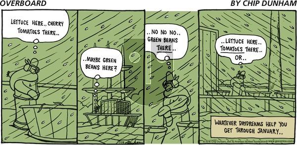 Overboard on Sunday January 14, 2018 Comic Strip