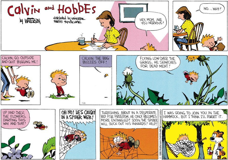 Calvin and Hobbes Comic Strip for July 24, 2016