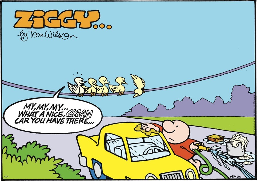 Ziggy Comic Strip for August 24, 2014