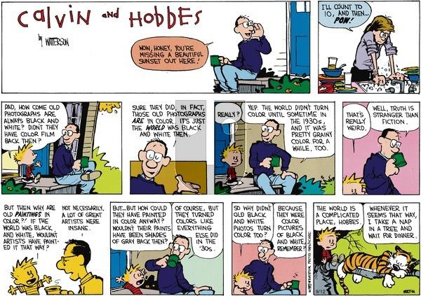 Calvin and Hobbes - Sunday November 9, 2014 Comic Strip