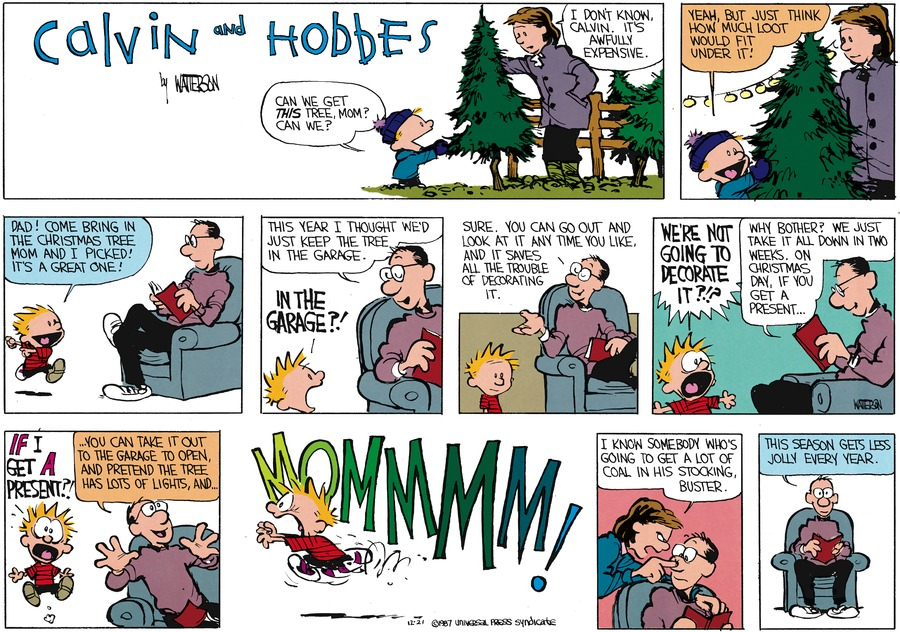 Calvin and Hobbes Comic Strip for December 20, 1987