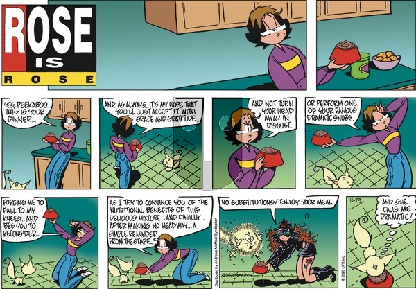 Rose is Rose - Sunday November 29, 2020 Comic Strip