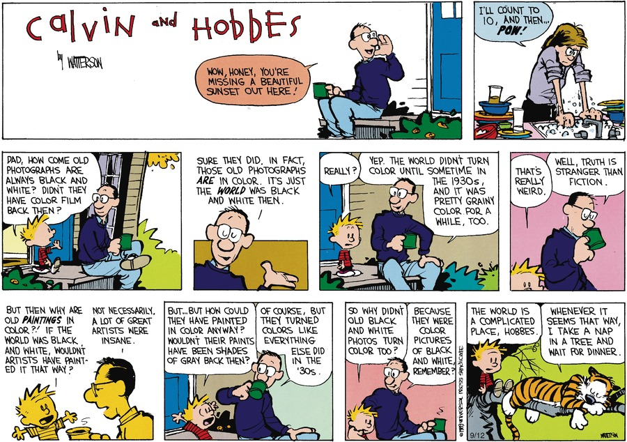 Calvin and Hobbes Comic Strip for November 09, 2014