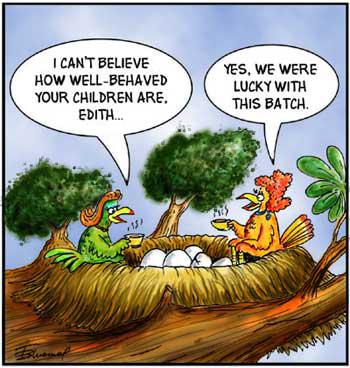 Birdbrains Comic Strip for October 10, 2019