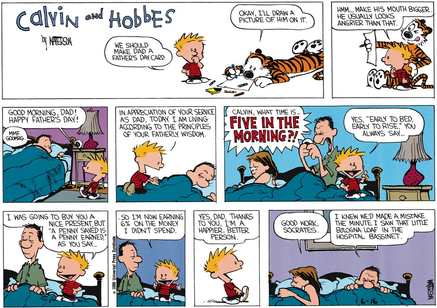 Calvin and Hobbes Comic Strip for June 15, 1986