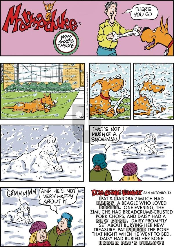 Marmaduke on Sunday January 31, 2021 Comic Strip