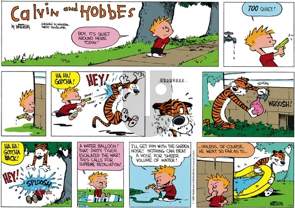 Calvin and Hobbes - Sunday July 31, 2016 Comic Strip