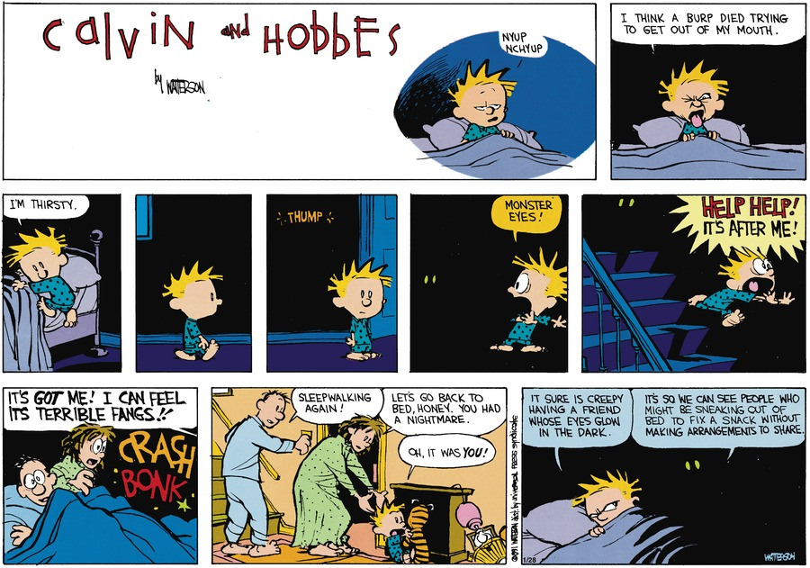 Calvin and Hobbes Comic Strip for March 17, 1991