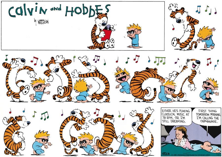 Calvin and Hobbes Comic Strip for January 29, 2017