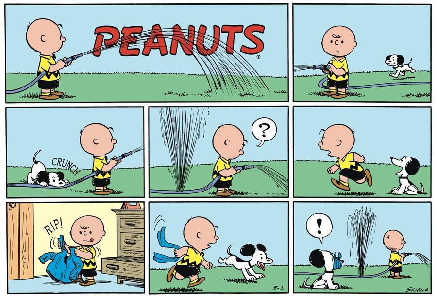 Peanuts Begins Comic Strip for August 02, 1953