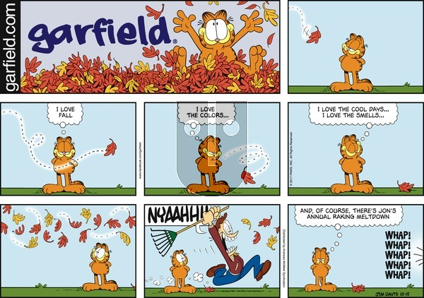 Garfield on Sunday October 15, 2017 Comic Strip