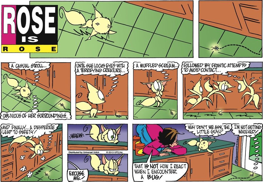 Rose is Rose Comic Strip for April 07, 2013