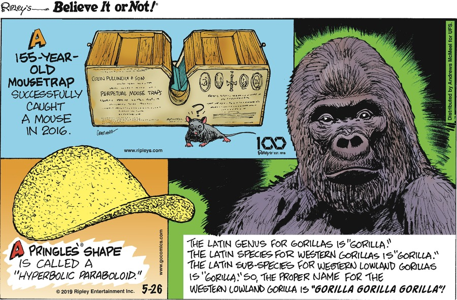 Ripley's Believe It or Not Comic Strip for May 26, 2019