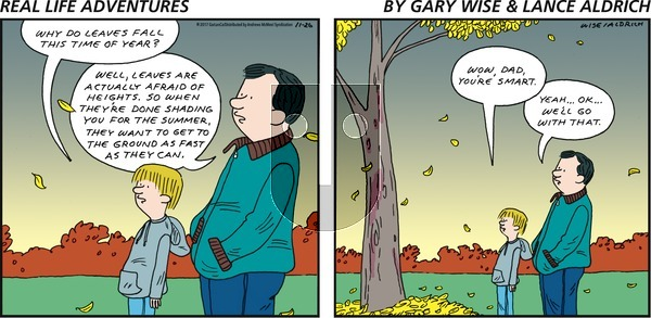 Real Life Adventures on Sunday November 26, 2017 Comic Strip