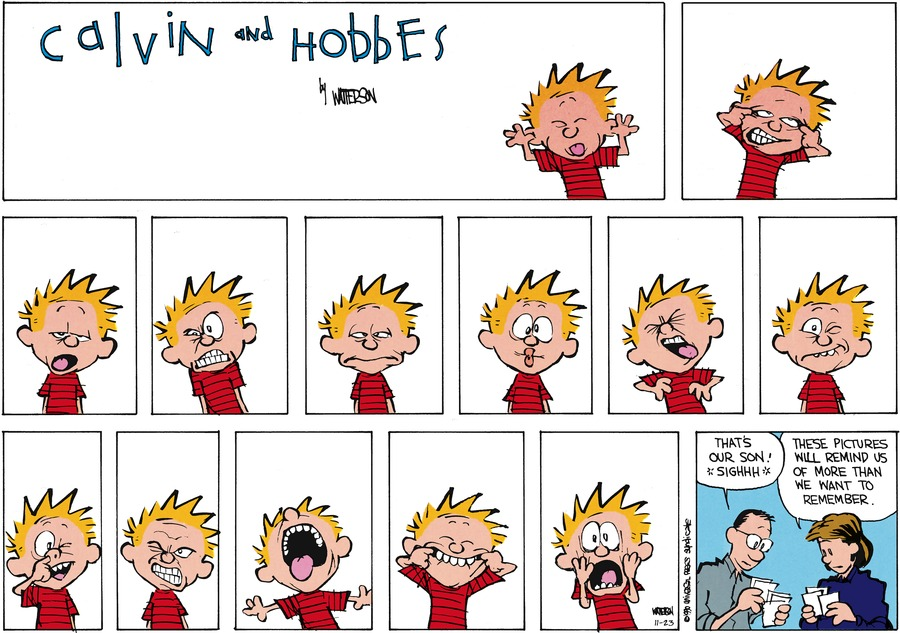 Calvin and Hobbes Comic Strip for November 23, 2014