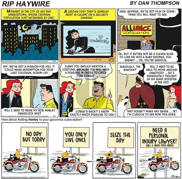 Rip Haywire on Sunday December 27, 2020 Comic Strip